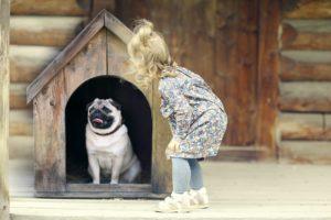 Psí bouda - povinnost, pokud necháte spát svého pejska venku