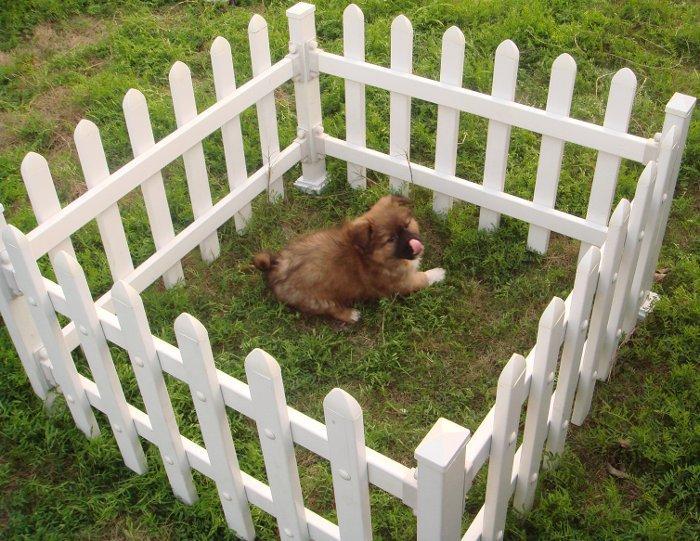 Venkovní plastová ohrádka pro psy