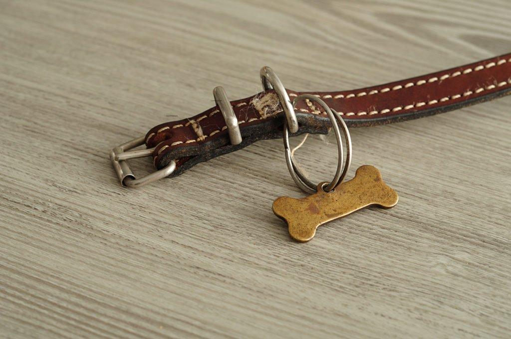 Známka pro psa kost
